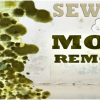 25% Off Insurance Deductible | Water Damage Baltimore | Sewage & Mold Removal | 443-651-2841